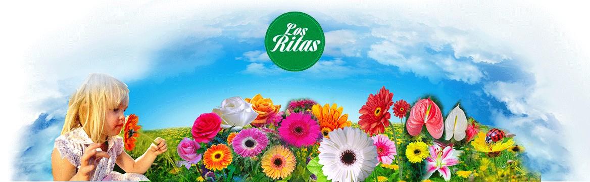 Los Ritas